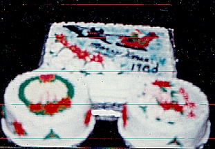 Christmas Cake with Santa's Sleigh ~ Wreaths ~ Poinsettas
